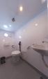 Firebird bathroom