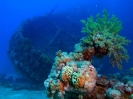 underwater1_19