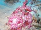 underwater1_69